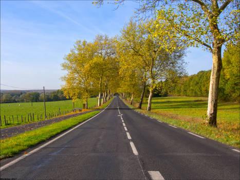 Route d'automne 6