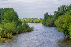 L'Ile-Bouchard 8