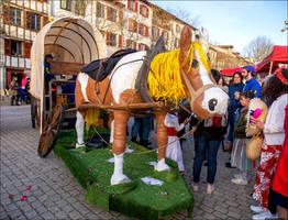 Carnaval Bayonne 2020 9