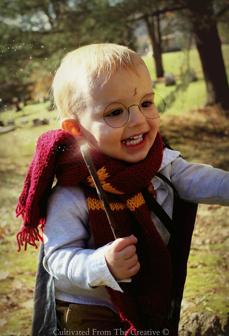 Harry Potter Costume 2014 by CreativityFTCorrupt