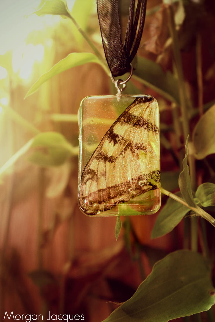 (Real) Butterfly Wing Necklace by CreativityFTCorrupt