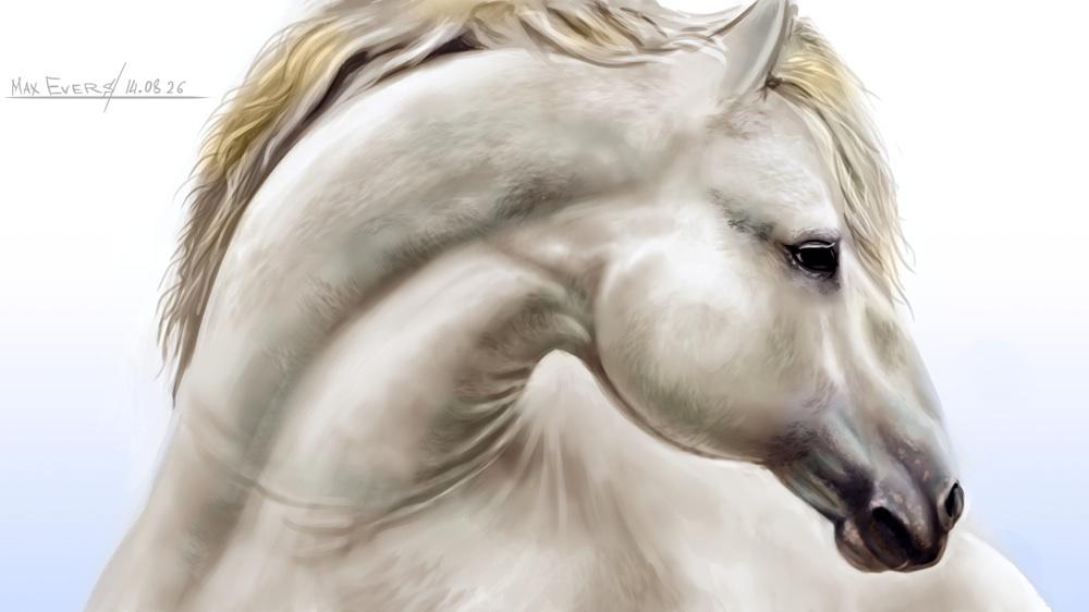 White Horse by darthMefisto
