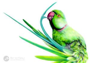 Tidying Feathers by ArtbyKerli