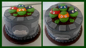 TMNT Birthday Cake