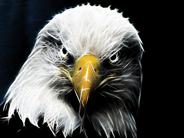 Rodilius Eagle by mikethedj4