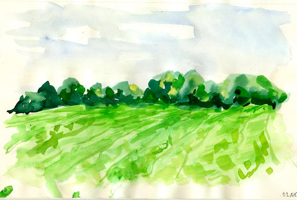 Spring field by ElwenNoriel