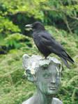 Stock crow statue