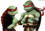 TMNT Raphael and Larota 01