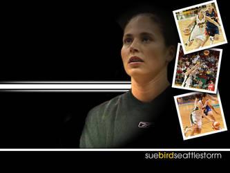Sue Bird Face 02 by kilcher