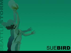 Sue Bird Masked