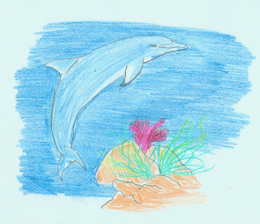dolphin by naturelovekitsune - Coloration Hnn