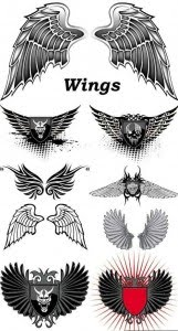 Wings Vector Collection by doctorromantico