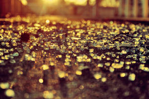 all that glitters by latticeworkopines