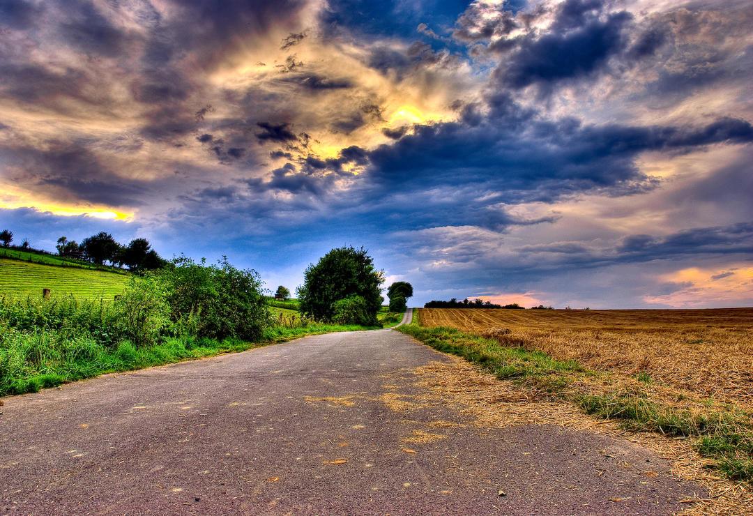 Road to peace by alierturk
