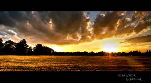 Munich, the field