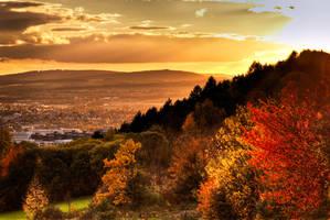 Goettingen, Colors  of fall by alierturk
