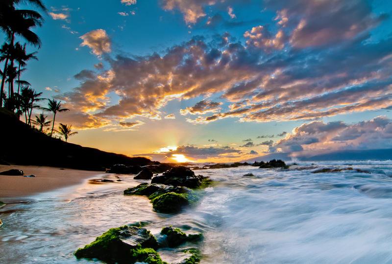 Hawaii, in the waves by alierturk