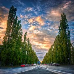 Munich, Road to the University by alierturk