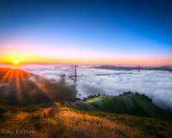 San Francisco, Invasion of the fog by alierturk