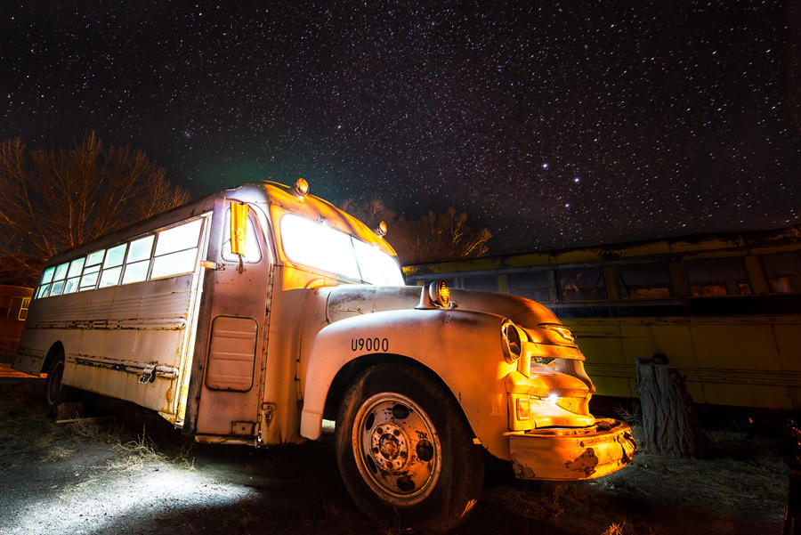 Holly Bus by alierturk