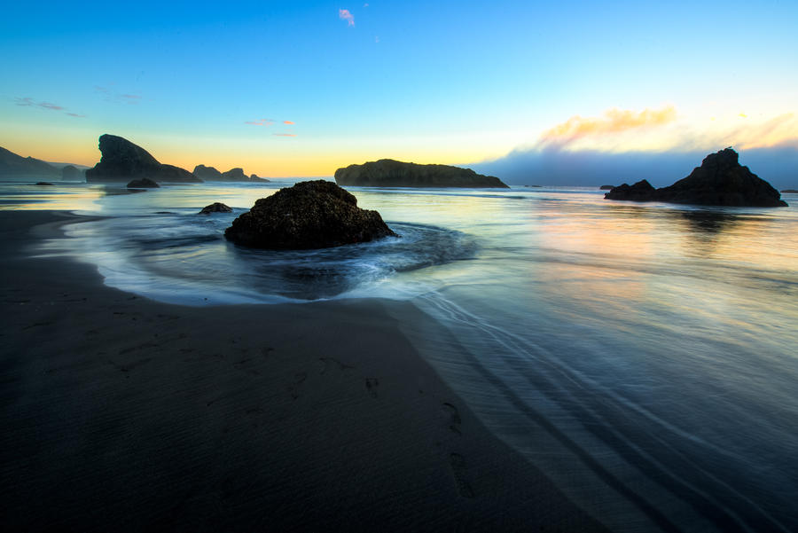 West Coast, Sharks by alierturk