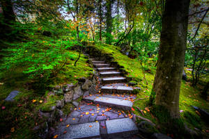 Portland, stairs of Lothlorien by alierturk