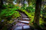 Portland, stairs of Lothlorien