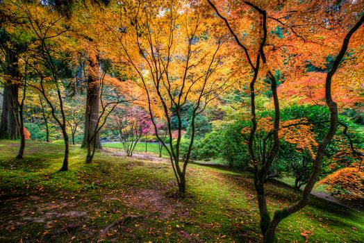 Portland, Japanese Garden visit