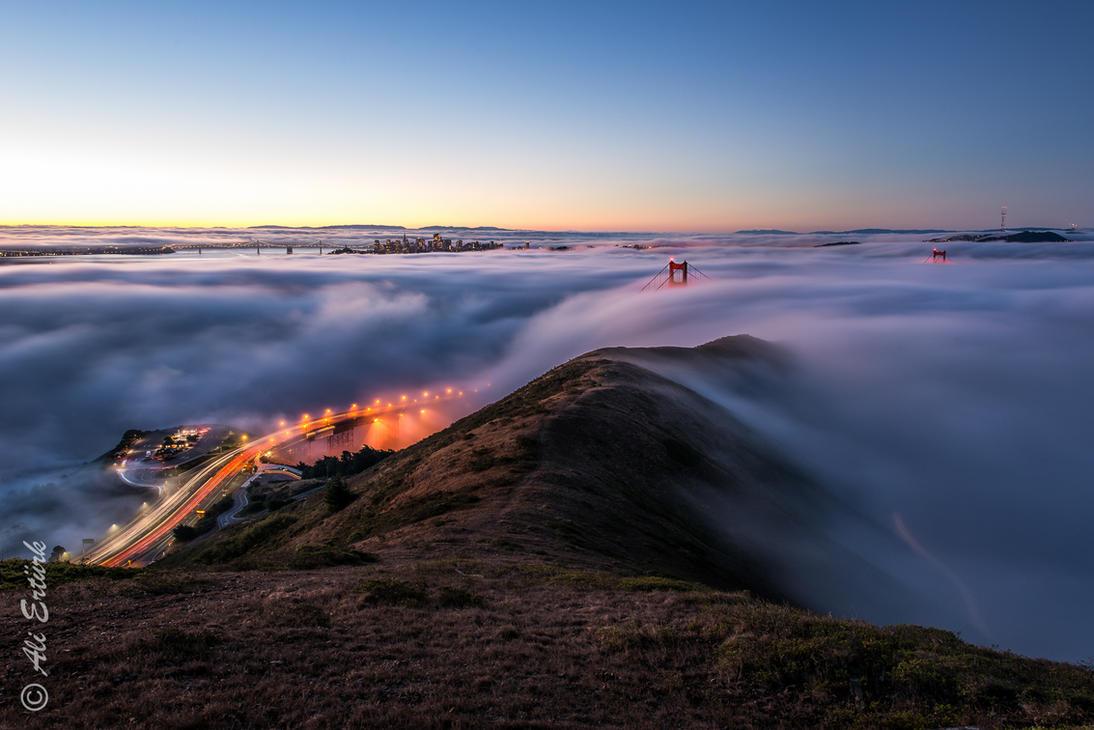 San Francisco Bay by alierturk