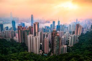 Hong Kong, illuminated by alierturk