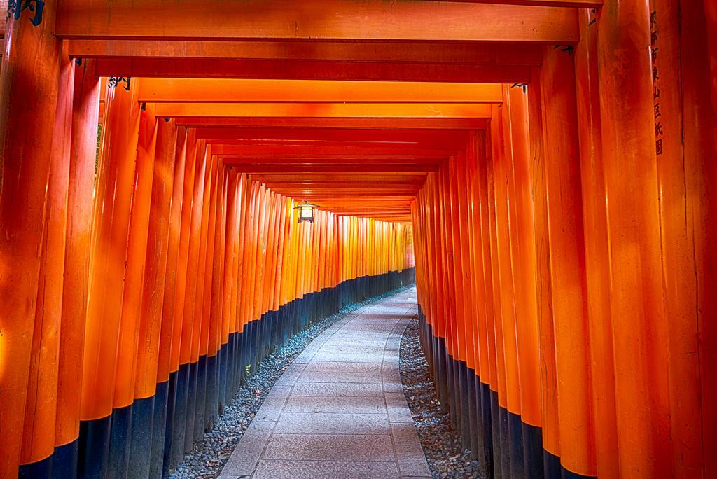 Fushimi Inari Taisha - Kyoto, Japan by alierturk