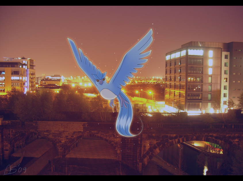 City Bird by Articuno