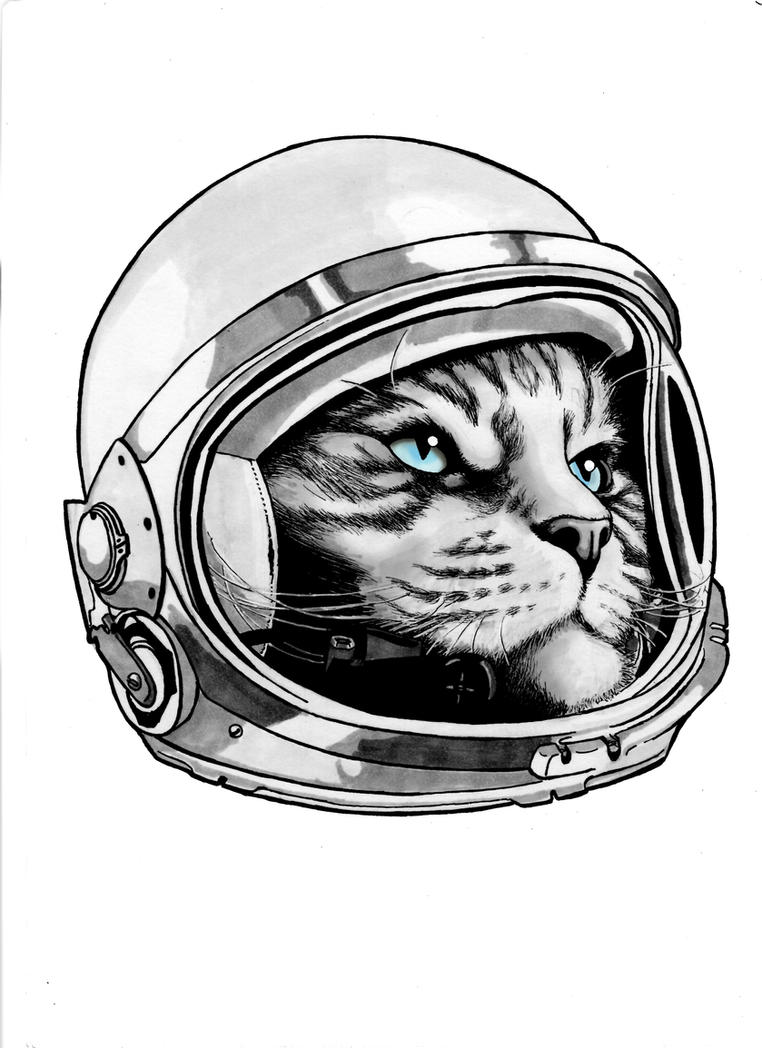 Space Kitty - Major Tom by dmbarnham
