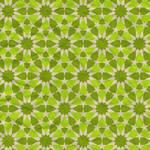 12 Point Geometric Pattern