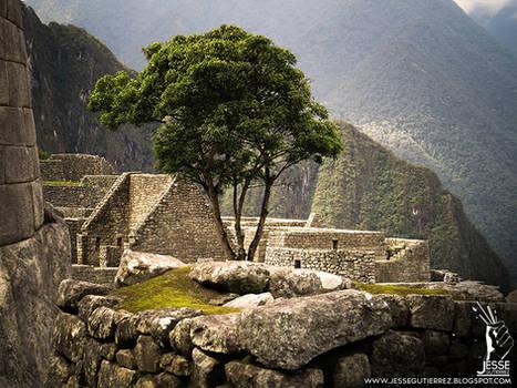 Machu Picchu - Peru -  Shot 24
