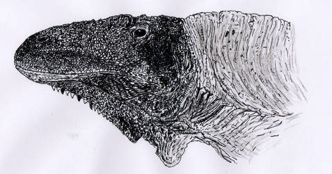 Acrocanthosaurus atokensis portrait by Brutonyx