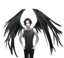 Dark Wings: Void by momijigirl