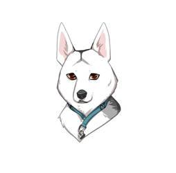 Zico! - Pet Portrait