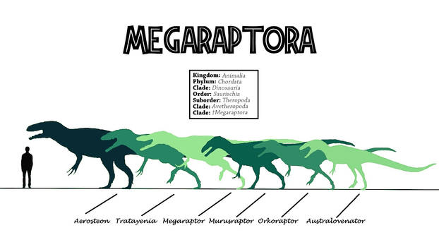 Obscure Theropods