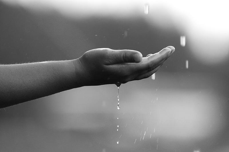Rain theme