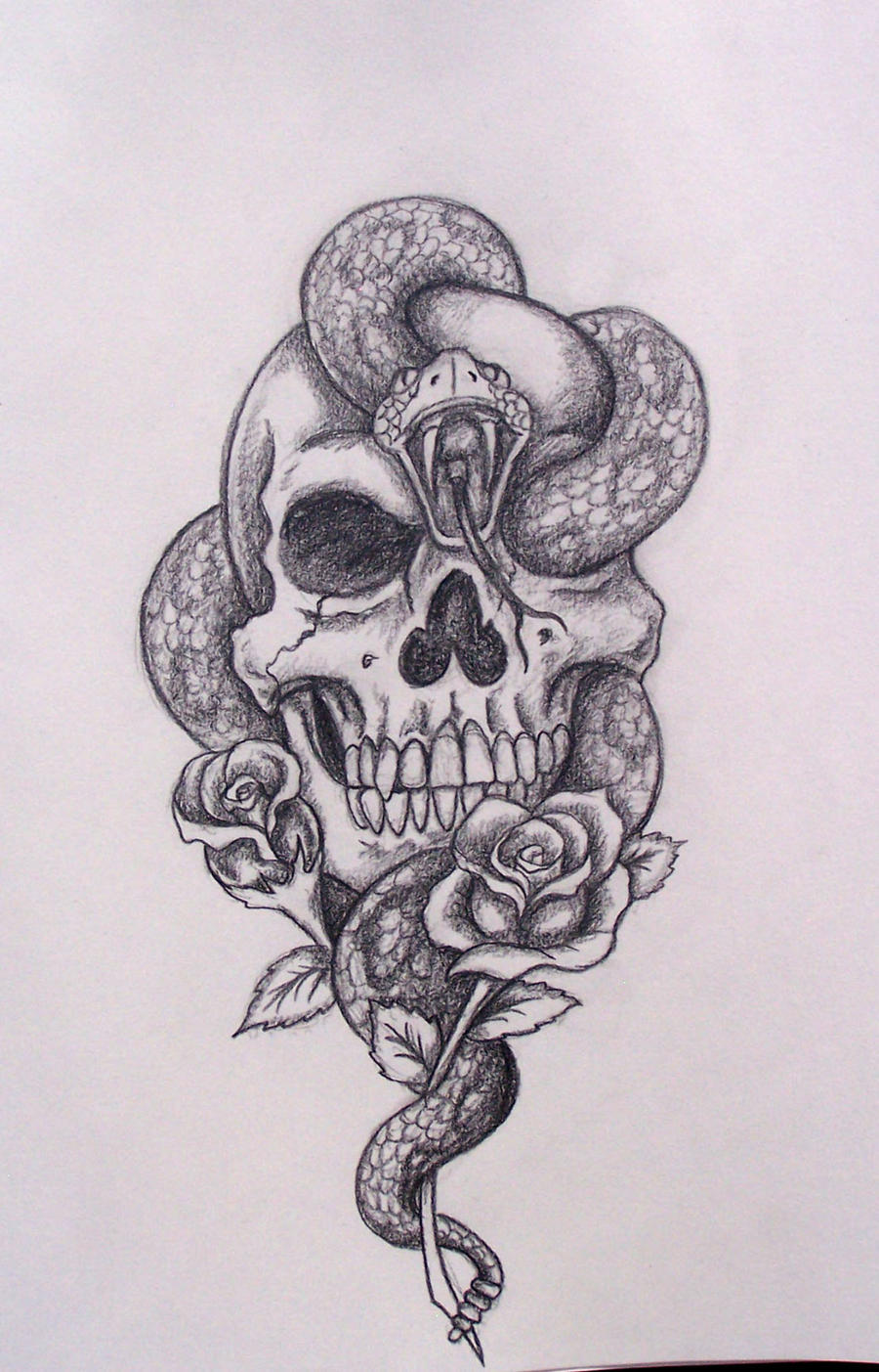 Snake with Skull and Rose Drawing