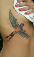 Swallow in flight by Phedre1985