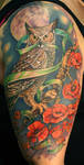 Melissa's Owl by Phedre1985