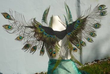 Peacock Empress - big wearable Wings