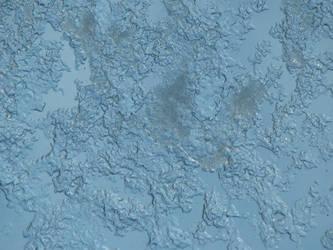 Melting Snow 6 by crossedbrushstudio
