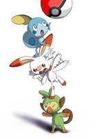 Pokemon Sword and Shield Starters by PyroPk
