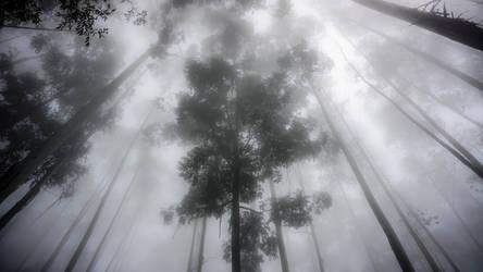 In clouds by Dimen-Zion