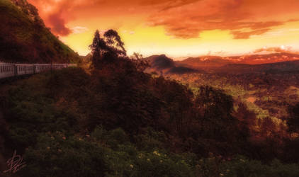 Travel by Dimen-Zion