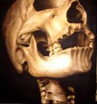 Complementary Skull