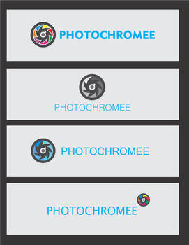 Logo Options - Photochromee